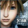 Sora up close
