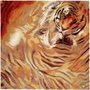 tigers lions avatars 0256